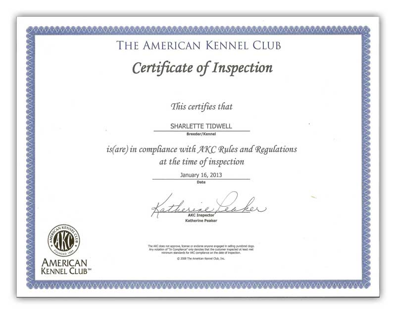 American Kennel Club Certificate